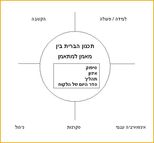 מודל אימון שותפות פעילה
